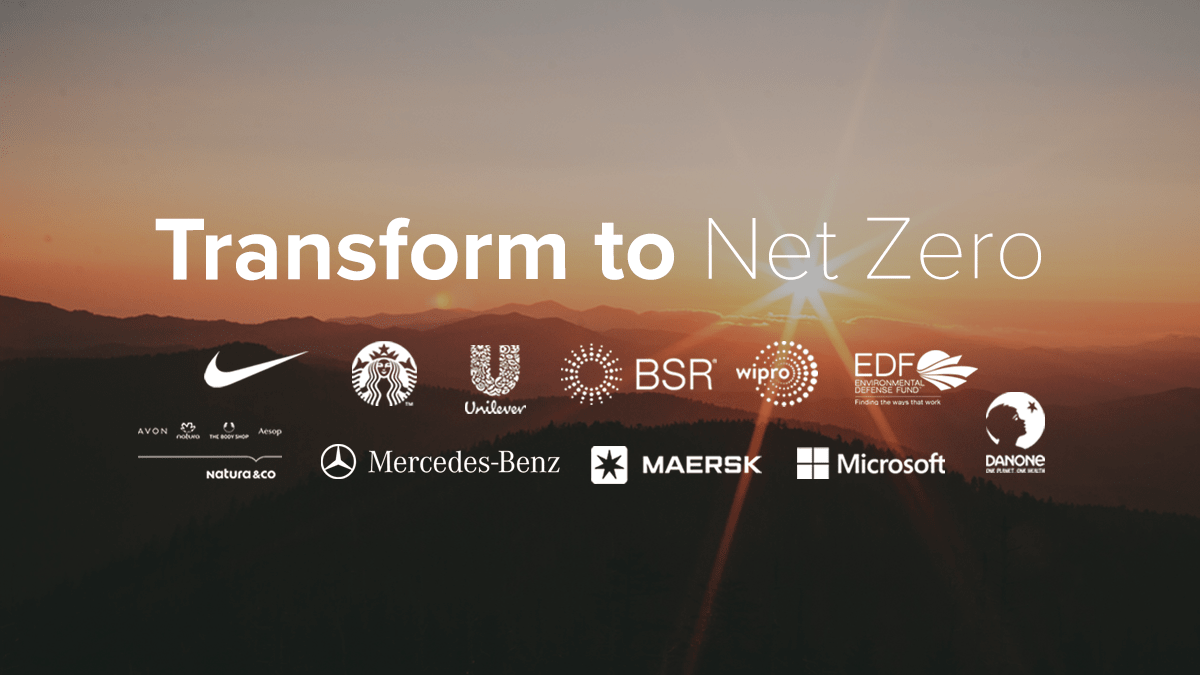 transform_to_net_zero_initiative.png